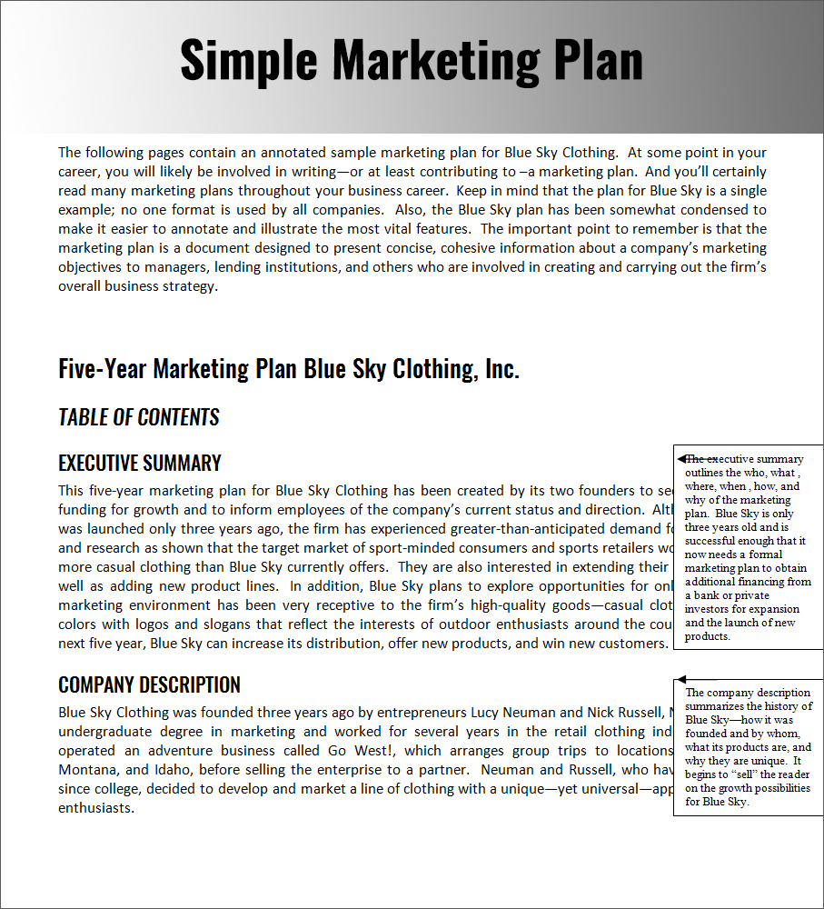 Writing Business Plans Planning Business Strategies - Sample business plan template pdf